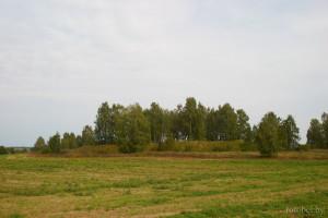 замок Ходкевичей