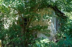 деревня Макаровцы