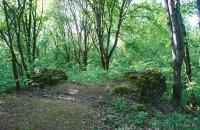 Геранёны замок Гаштольдов