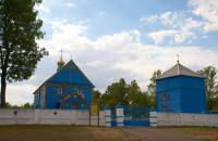 Дмитровичи