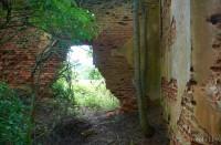 усадьба в Жабчево