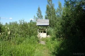 Криница в деревне Победа