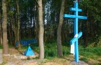 Криница в деревне Лесная
