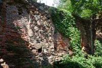 мельница в Тресковщине
