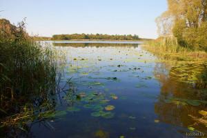 Озеро Большое Язно