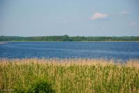 Озеро Дрисвяты