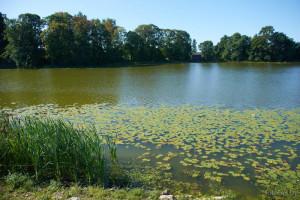 Озеро Миорское