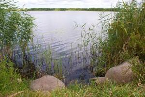 Озеро Несьпиш