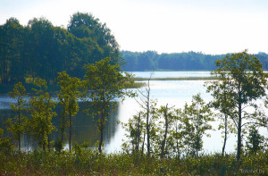 Озеро Ричи