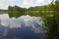 Озеро Вышедское