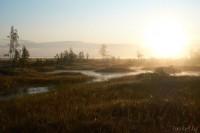 болото Ельня