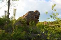 Песчаники Беларуси