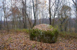 Яновщина камень