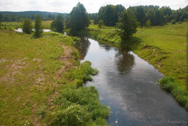 Река Бася