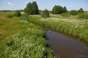 Река Брусята