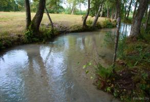 Река Голуба