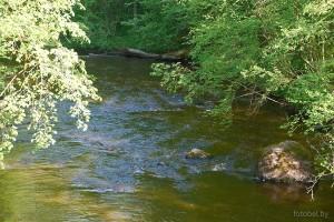 Река Городенка
