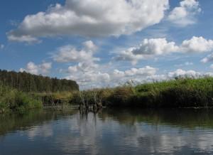 Река Осливка