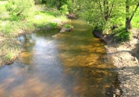 Река Перетуть