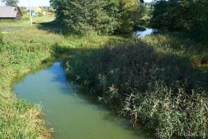 Река Соломянка
