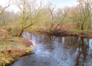 Река Сосница