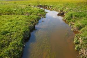 Река Свитязь
