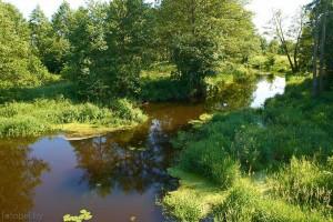 река Талица