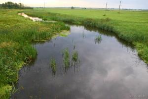 Река Уша