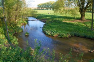 Река Валовка