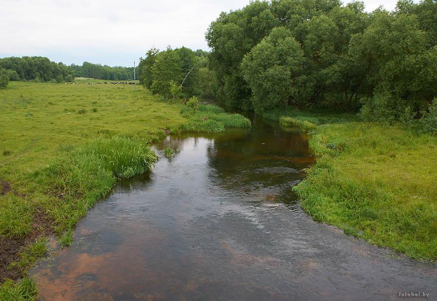 река уса дзержинский район рыбалка