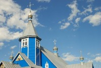 церковь в Болотчицах