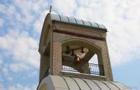 Краснодворцы церковь