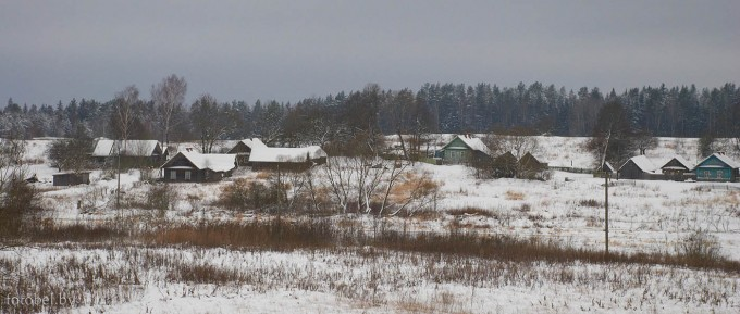 Сани Толочинский район