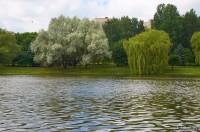 Водохранилище Лошица