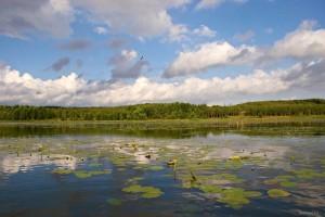 Озеро Тетеринское